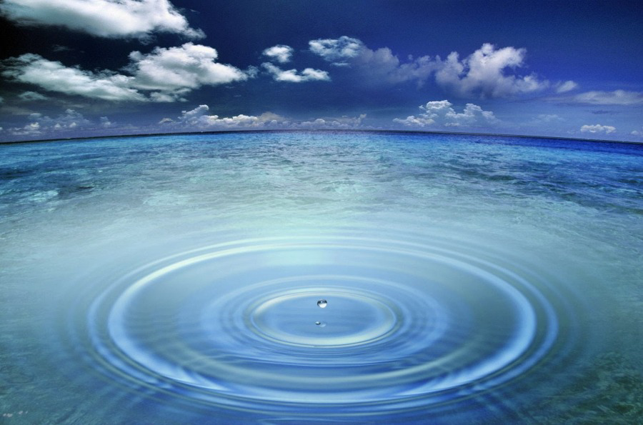 EACH DROP MAKES THE OCEAN. REFLEXIONS ABOUT COVID-19